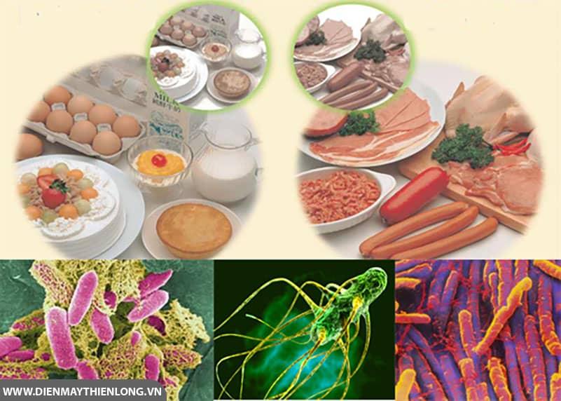bacillus-cereus-trong-thuc-pham