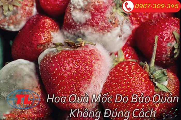 hut-chan-khong-bao-ve-thuc-pham